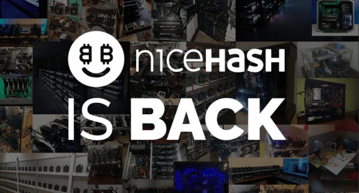 nicehash back