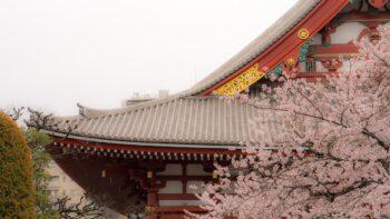 Japońskie giełdy stawiają na samoregulację