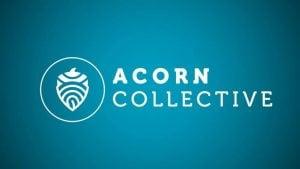 acorn 2