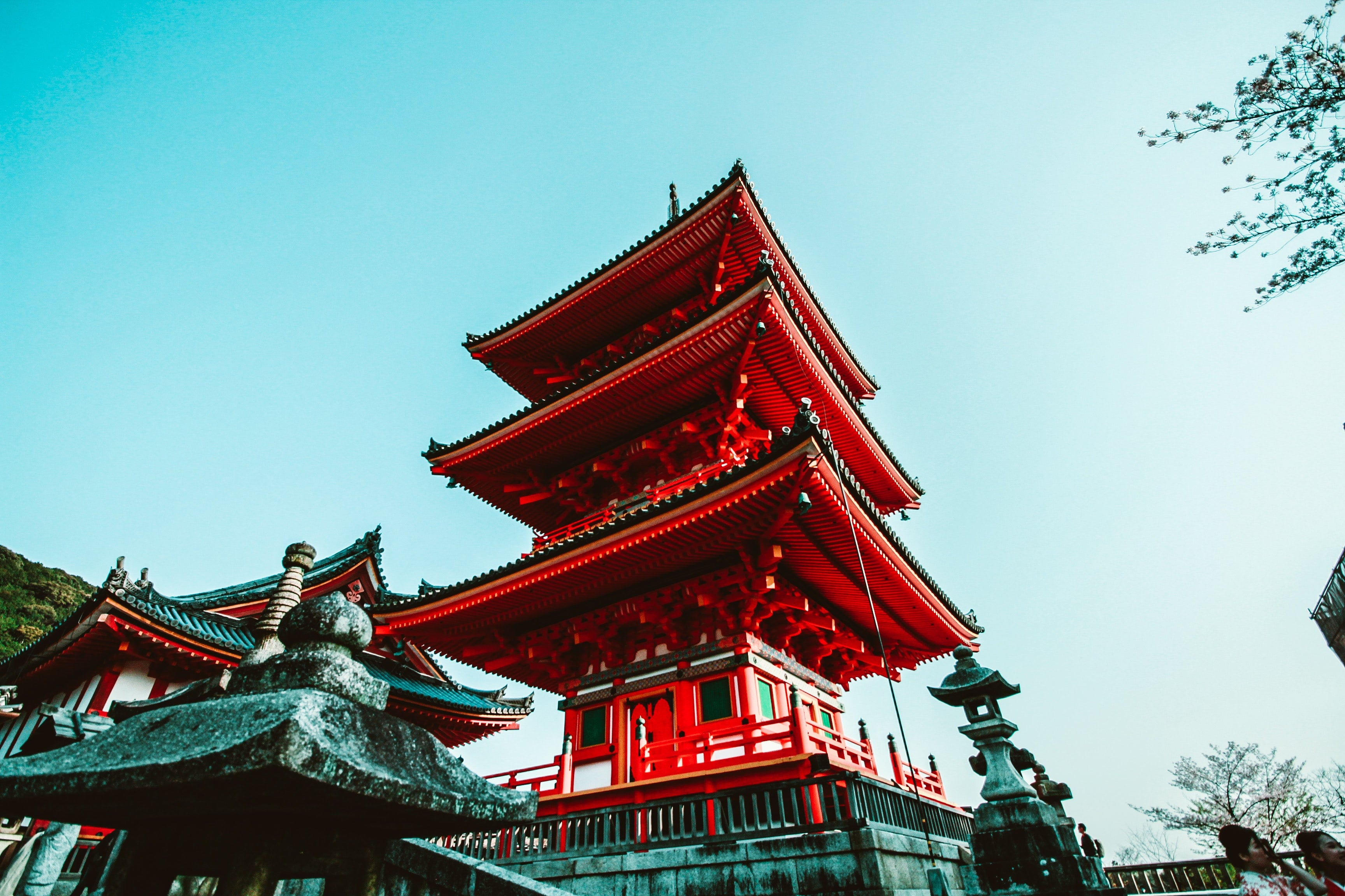 japonia stablecoin