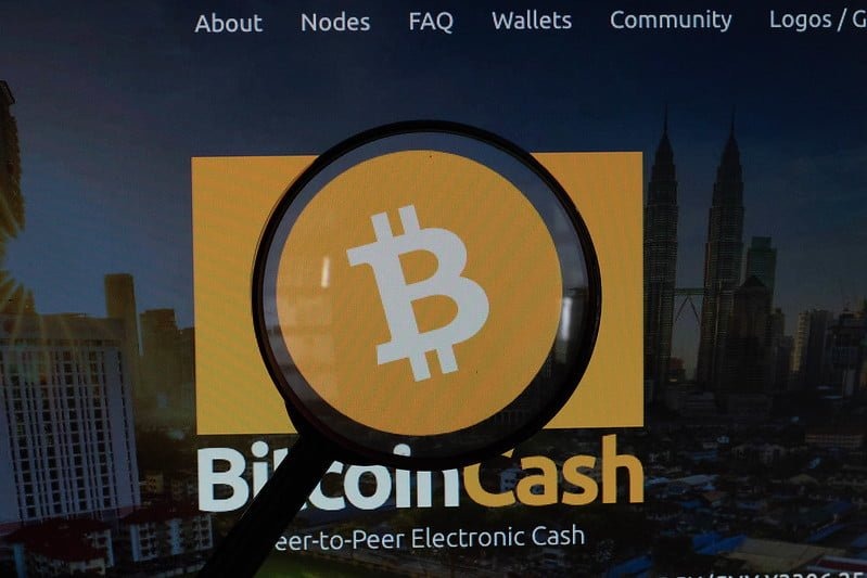 Magnifying glass over Bitcoin Cash logo