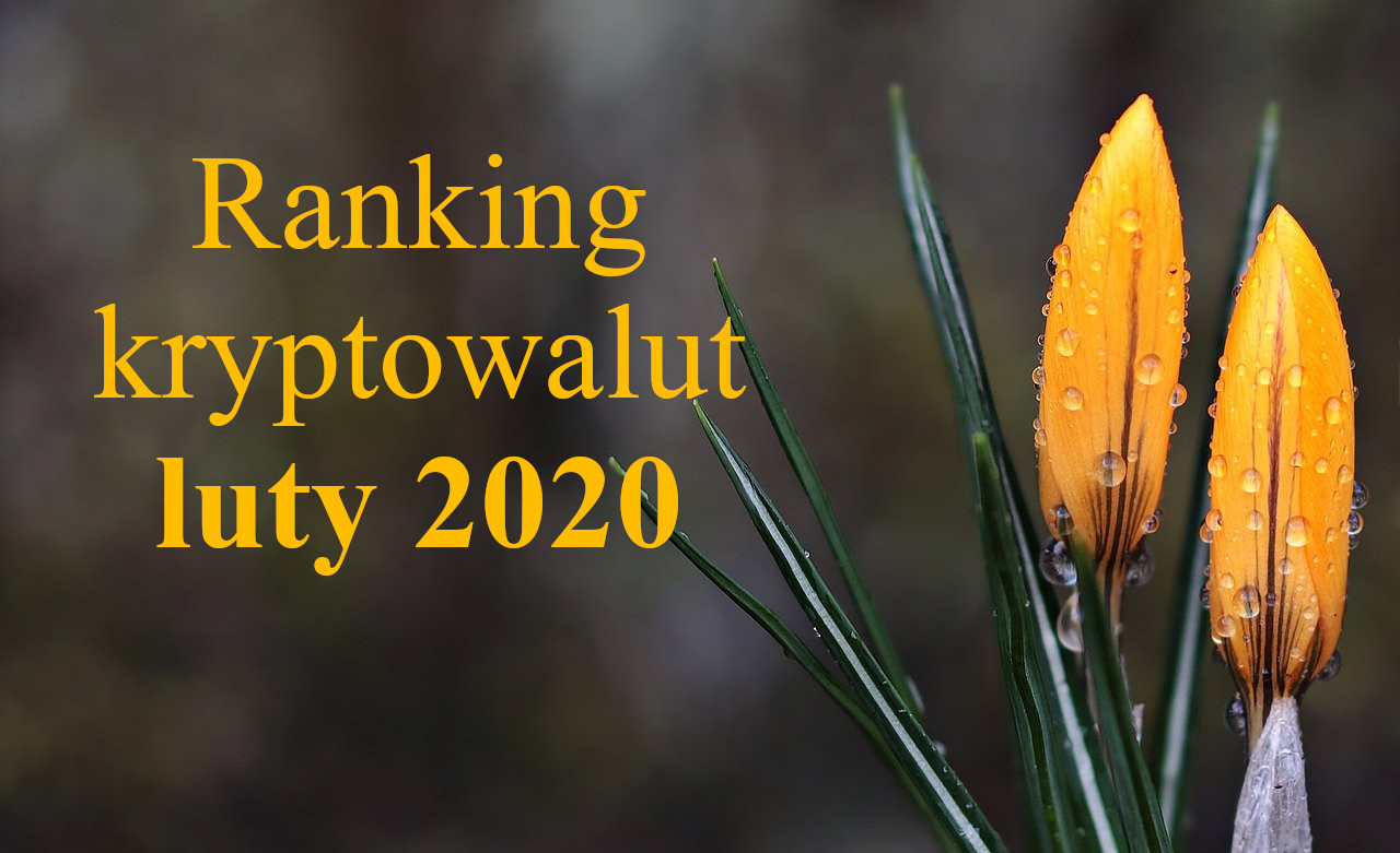 ranking krypto luty 2020