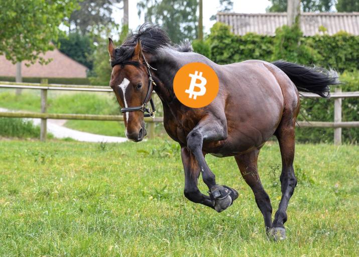bitcoin ath 41 000
