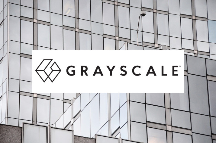 grayscale chainlink